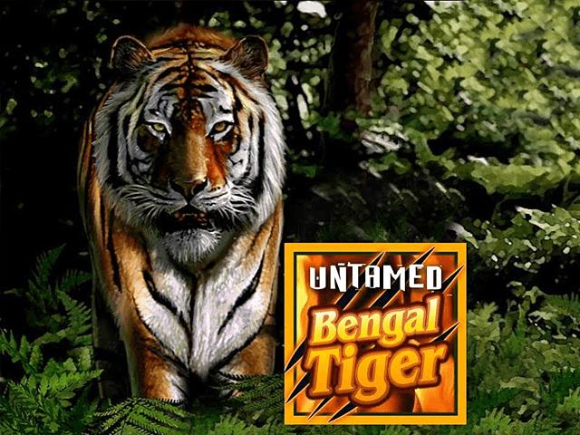 Автомат на деньги Бенгальский Тигр